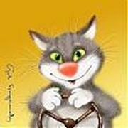 Любители прикольных фоток с котами group on My World