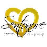 Sent-Onore Салон продаж музыкальных инструментов и оборудования группа в Моем Мире.