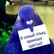 Blue Bird on My World.