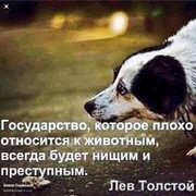 Алексей Смыков on My World.